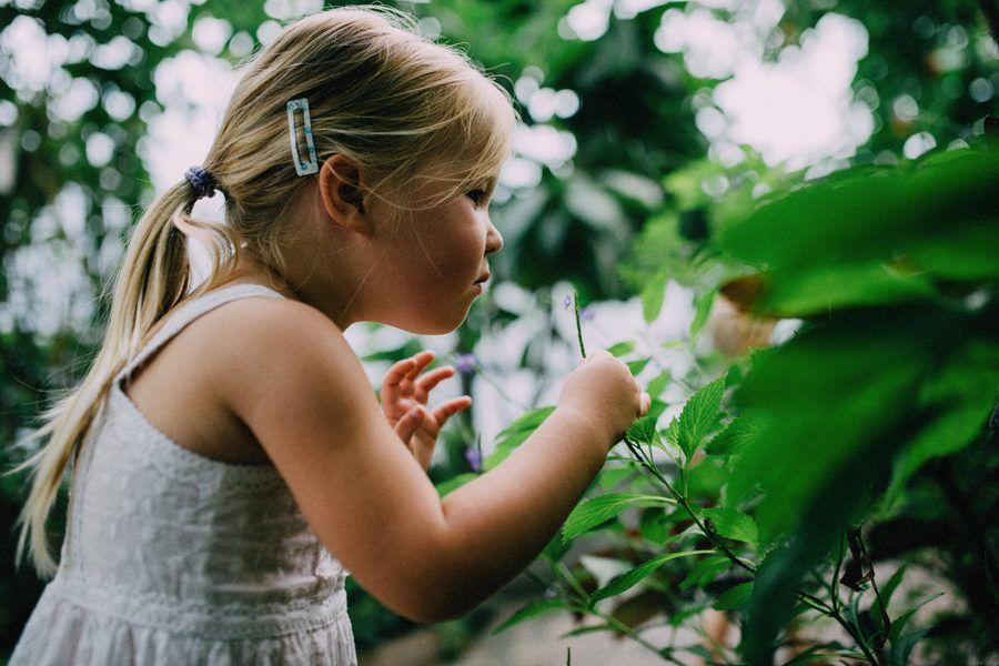 day in the life, familiefotografie ongeposeerd, natuurlijke kinderfotografie den bosch
